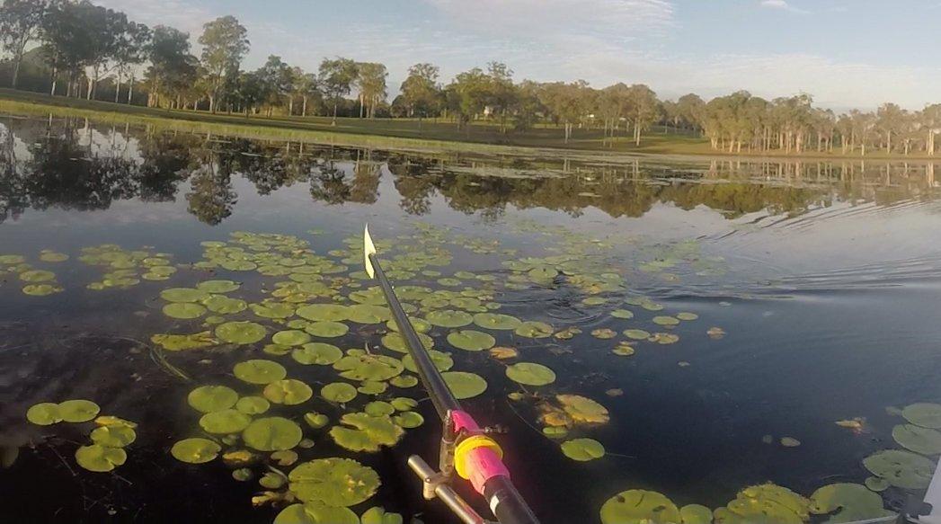 Rowing on Lake Macdonald